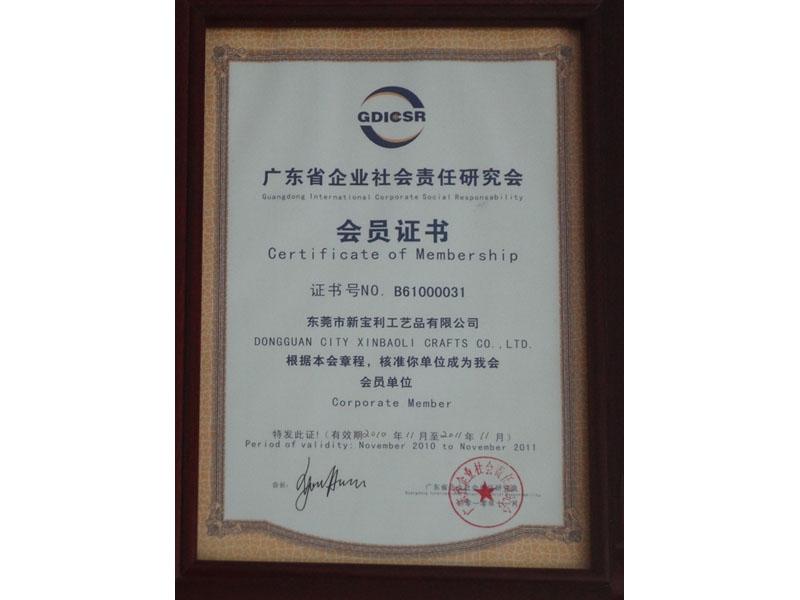 Social Responsibility Research Association Membership Certificate